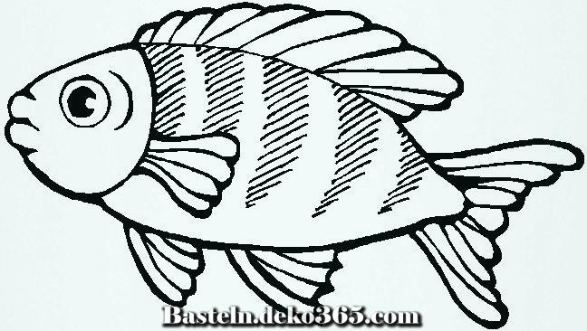 Malvorlagen Ohne Fisch Malvorlagen Zu Gunsten Von Kinder