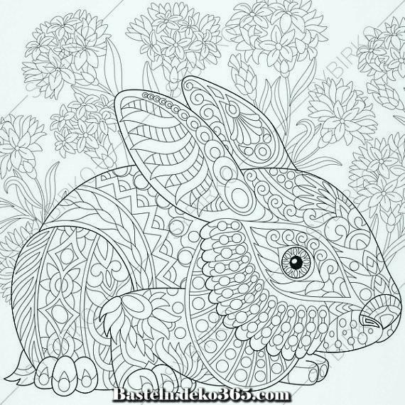 osterhase lapin hare 3 malvorlagen tiermalbuchseiten z