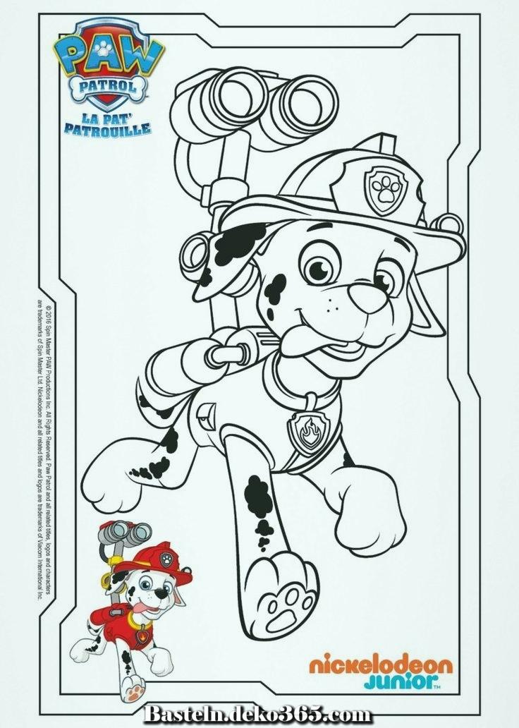 paw patrol coloring  dalmatiner marshall  basteln mit kids