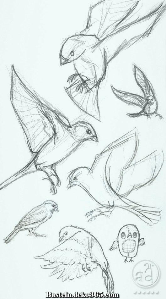 Vogelzeichnung Ideen zu Händen Neuling. Kommen Sie meinen YouTube