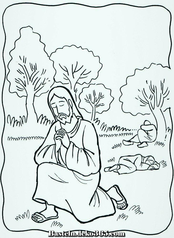 garten malvorlagen von gethsemane 1000 bilder gen vbs